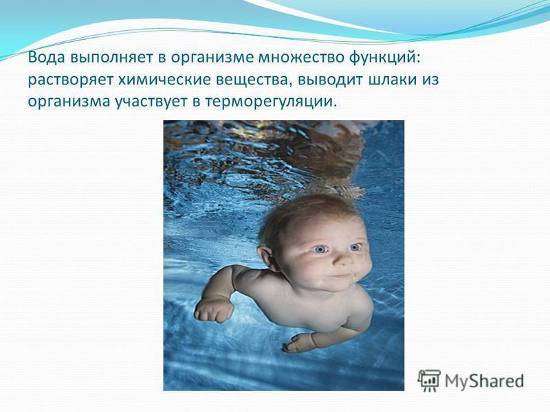 Вода выполняет в организме множество функций: растворяет химические вещества, выводит шлаки из организма участвует в терморегуляции.