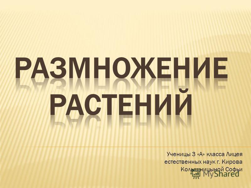 Ученицы 3 «А» класса Лицея естественных наук г. Кирова Колышницыной Софьи