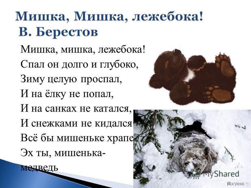 Мишка, мишка, лежебока! Спал он долго и глубоко, Зиму целую проспал, И на ёлку не попал, И на санках не катался, И снежками не кидался... Всё бы мишеньке храпеть. Эх ты, мишенька- медведь