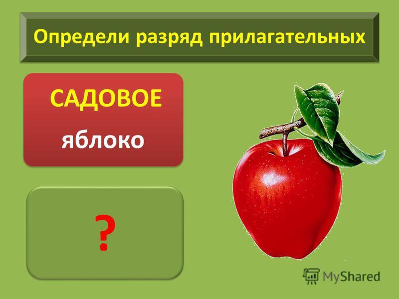 Определи разряд прилагательных САДОВОЕ яблоко ? ?