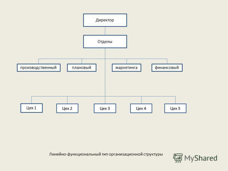 Директор Отделы производственныйплановыймаркетингафинансовый Цех 1 Линейно-функциональный тип организационной структуры