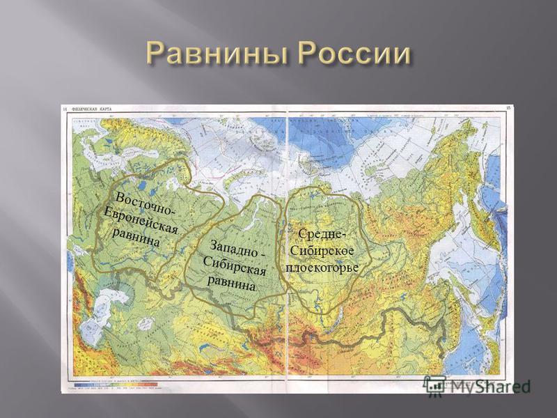 Восточно - Европейская равнина Западно - Сибирская равнина Средне - Сибирское плоскогорье