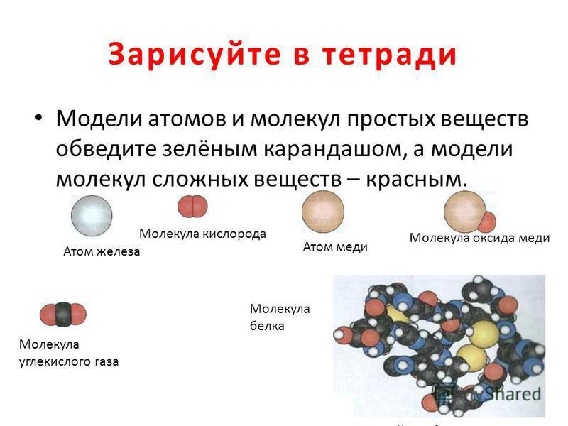 Зарисуйте в тетради Модели атомов и молекул простых веществ обведите зелёным карандашом, а модели молекул сложных веществ – красным. Молекула белка Атом железа Молекула кислорода Атом меди Молекула оксида меди Молекула углекислого газа Молекула белка
