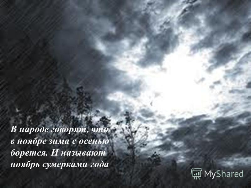 В народе говорят, что в ноябре зима с осенью борется. И называют ноябрь сумерками года