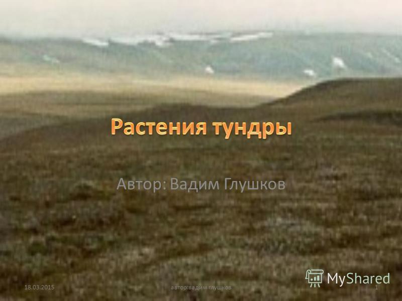Автор: Вадим Глушков 18.03.20151 автор:вадим глушков