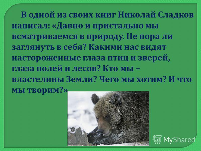 В одной из своих книг Николай Сладков написал : « Давно и пристально мы всматриваемся в природу. Не пора ли заглянуть в себя ? Какими нас видят настороженные глаза птиц и зверей, глаза полей и лесов ? Кто мы – властелины Земли ? Чего мы хотим ? И что