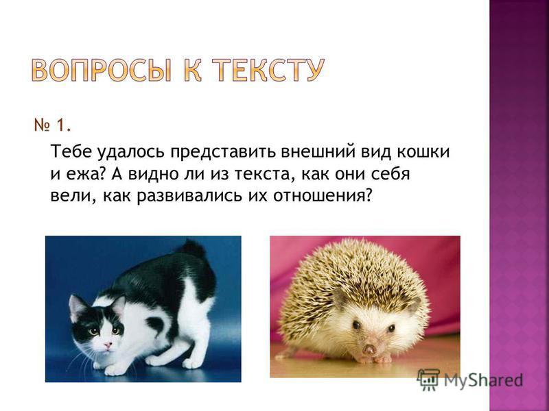 1. Тебе удалось представить внешний вид кошки и ежа? А видно ли из текста, как они себя вели, как развивались их отношения?