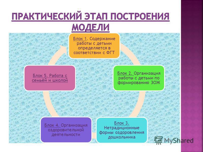 Блок 1. Содержание работы с детьми определяется в соответствии с ФГТ Блок 2. Организация работы с детьми по формированию ЗОЖ Блок 3. Нетрадиционные формы оздоровления дошкольника Блок 4. Организация оздоровительной деятельности Блок 5. Работа с семьё