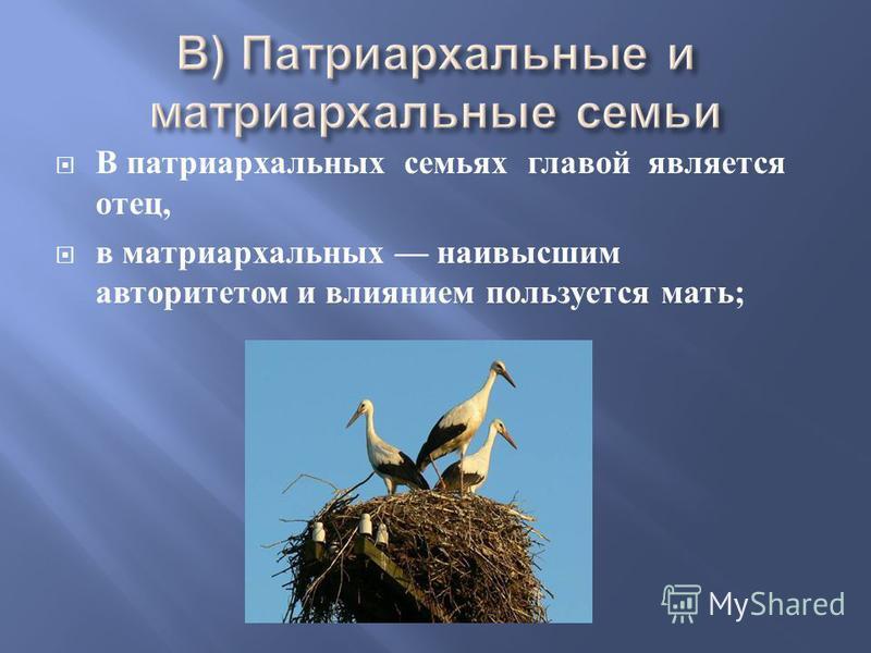 В патриархальных семьях главой является отец, в матриархальных наивысшим авторитетом и влиянием пользуется мать ;