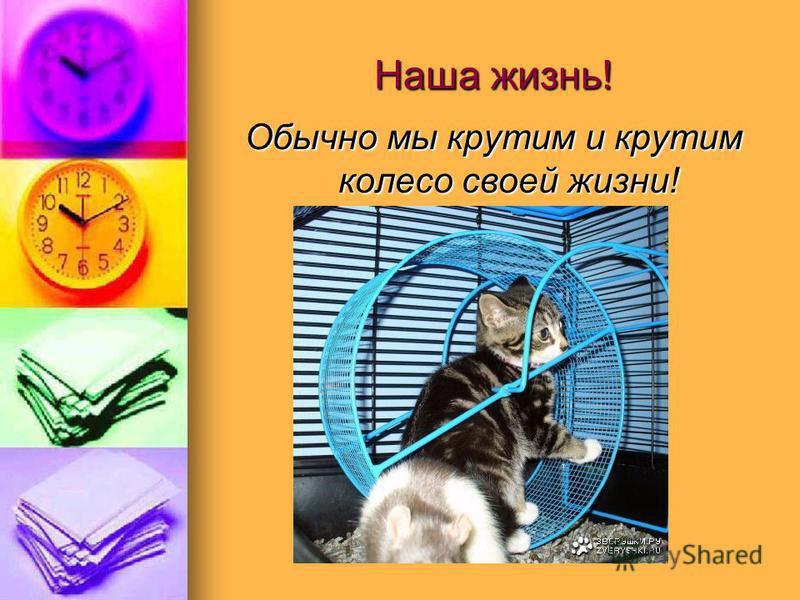 Наша жизнь! Обычно мы крутим и крутим колесо своей жизни!