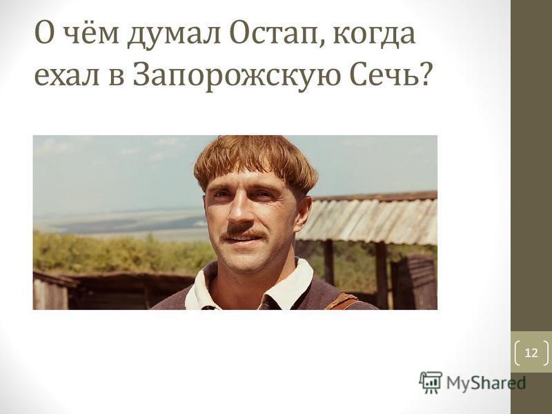 О чём думал Остап, когда ехал в Запорожскую Сечь? 12