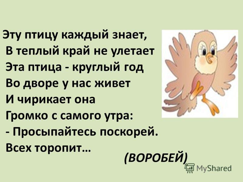 Эту птицу каждый знает, В теплый край не улетает Эта птица - круглый год Во дворе у нас живет И чирикает она Громко с самого утра: - Просыпайтесь поскорей. Всех торопит… (ВОРОБЕЙ)