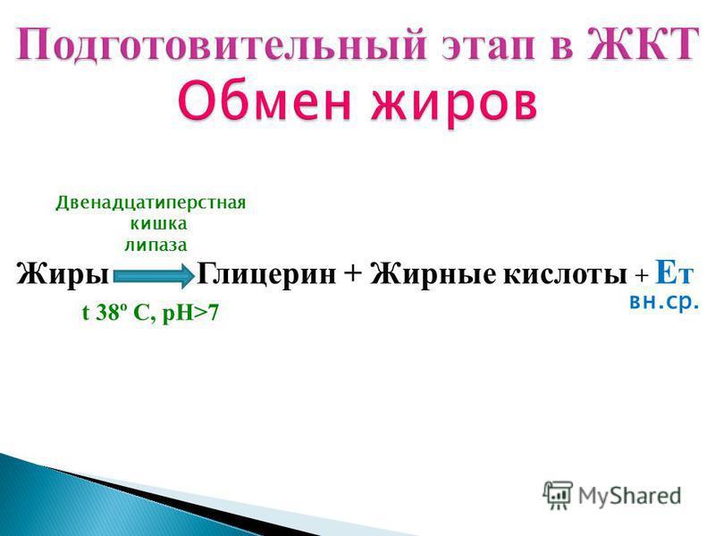 Жиры Глицерин + Жирные кислоты + Е т t 38º C, рН>7 Двенадцатиперстная кишка липаза вн.ср.