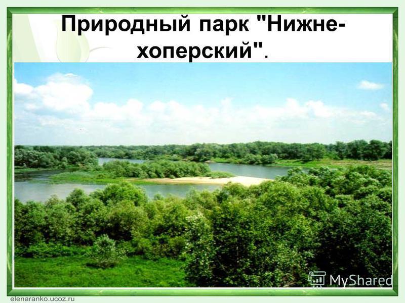 Природный парк Нижне- хоперский.