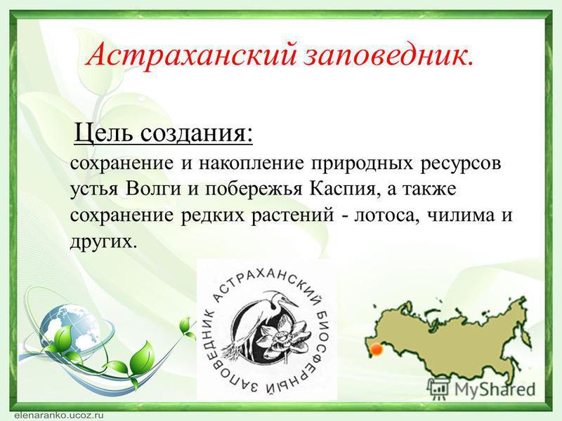 Астраханский заповедник. Цель создания: сохранение и накопление природных ресурсов устья Волги и побережья Каспия, а также сохранение редких растений - лотоса, чилима и других.