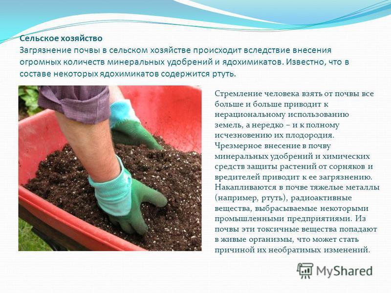 Сельское хозяйство Загрязнение почвы в сельском хозяйстве происходит вследствие внесения огромных количеств минеральных удобрений и ядохимикатов. Известно, что в составе некоторых ядохимикатов содержится ртуть. Стремление человека взять от почвы все