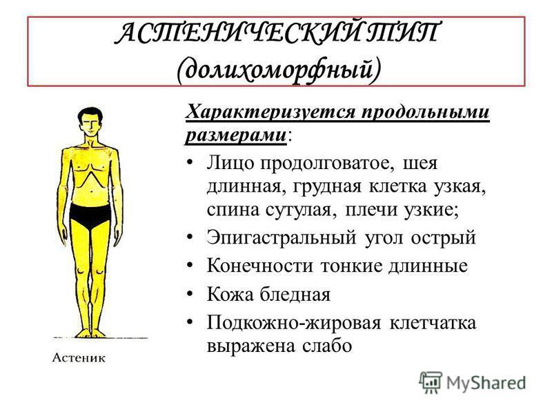 АСТЕНИЧЕСКИЙ ТИП (долихоморфный) Характеризуется продольными размерами: Лицо продолговатое, шея длинная, грудная клетка узкая, спина сутулая, плечи узкие; Эпигастральный угол острый Конечности тонкие длинные Кожа бледная Подкожно-жировая клетчатка вы
