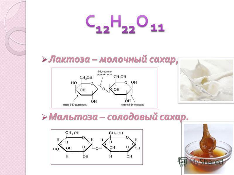 Лактоза – молочный сахар, Лактоза – молочный сахар, Мальтоза – солодовый сахар. Мальтоза – солодовый сахар.