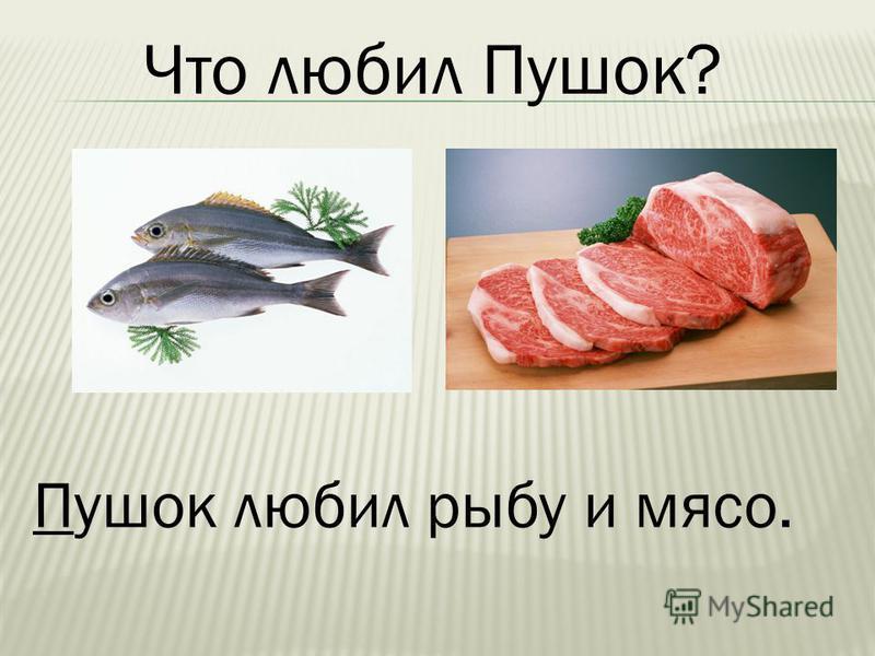 Пушок любил рыбу и мясо.