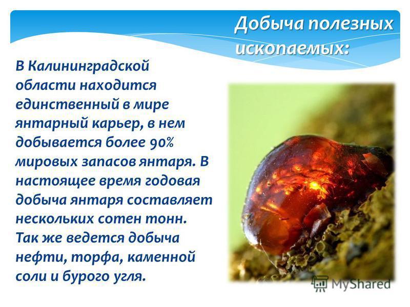В Калининградской области находится единственный в мире янтарный карьер, в нем добывается более 90% мировых запасов янтаря. В настоящее время годовая добыча янтаря составляет нескольких сотен тонн. Так же ведется добыча нефти, торфа, каменной соли и