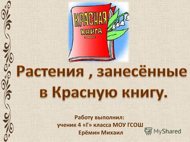 Работу выполнил: ученик 4 «Г» класса МОУ ГСОШ Ерёмин Михаил