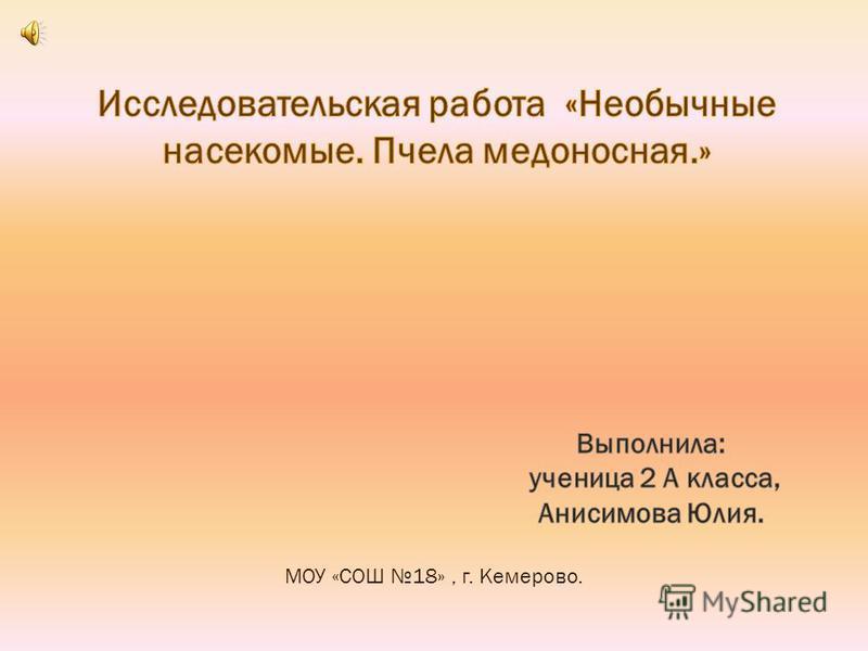 МОУ «СОШ 18», г. Кемерово.