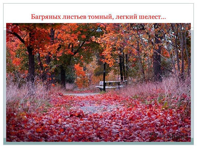 Багряных листьев томный, легкий шелест…