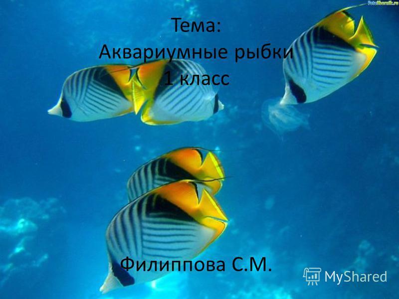 Тема: Аквариумные рыбки 1 класс Филиппова С.М.