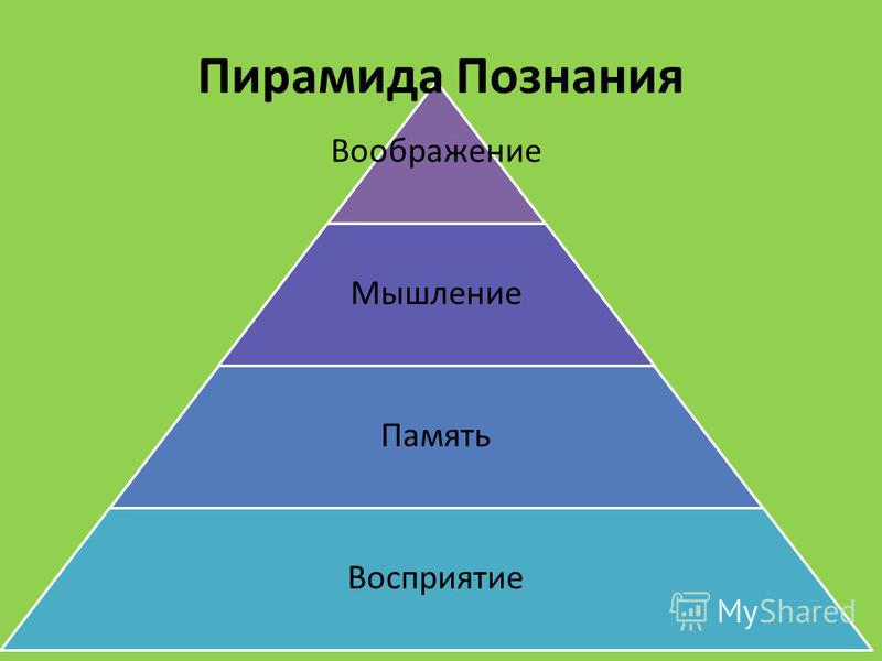 Воображение Мышление Память Восприятие Пирамида Познания