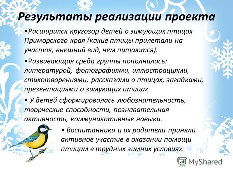 Результаты реализации проекта Расширился кругозор детей о зимующих птицах Приморского края (какие птицы прилетали на участок, внешний вид, чем питаются). Развивающая среда группы пополнилась: литературой, фотографиями, иллюстрациями, стихотворениями,