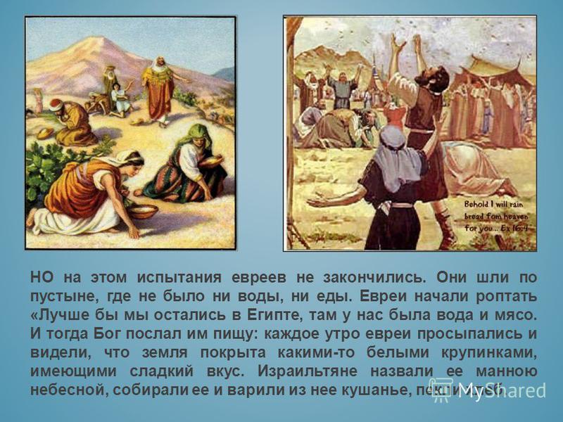 НО на этом испытания евреев не закончились. Они шли по пустыне, где не было ни воды, ни еды. Евреи начали роптать «Лучше бы мы остались в Египте, там у нас была вода и мясо. И тогда Бог послал им пищу: каждое утро евреи просыпались и видели, что земл
