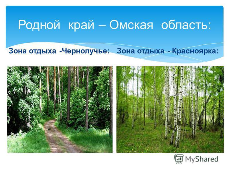 Родной край – Омская область: Зона отдыха -Чернолучье:Зона отдыха - Красноярка: