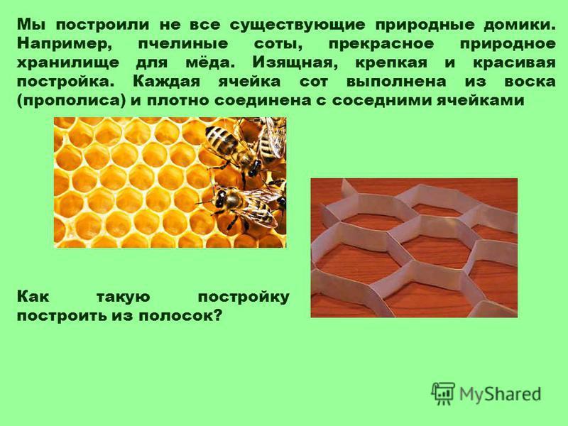 Мы построили не все существующие природные домики. Например, пчелиные соты, прекрасное природное хранилище для мёда. Изящная, крепкая и красивая постройка. Каждая ячейка сот выполнена из воска (прополиса) и плотно соединена с соседними ячейками Как т