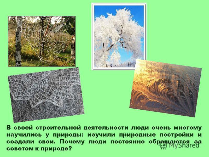 В своей строительной деятельности люди очень многому научились у природы: изучили природные постройки и создали свои. Почему люди постоянно обращаются за советом к природе?