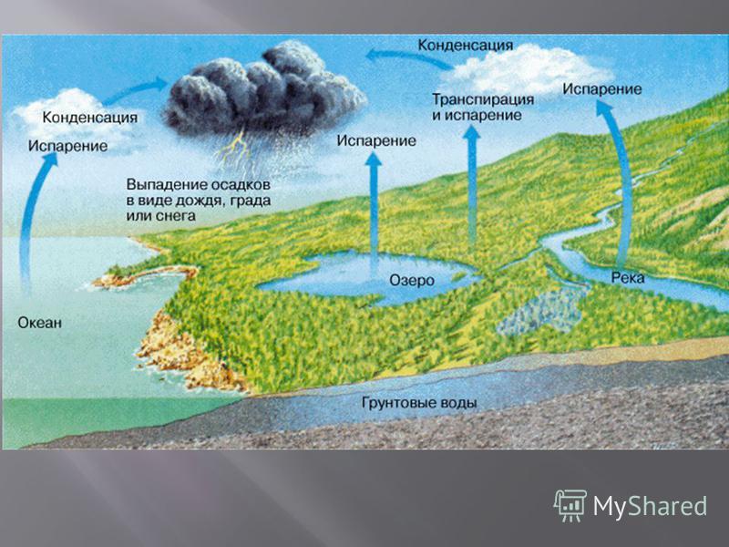Осреднённая для всего земного шара скорость испарения составляет около 2,5 мм в сутки. В целом она уравновешена величиной средне глобального количества атмосферных осадков (около 914 мм/год). Суммарный запас водяного пара в атмосфере эквивалентен при