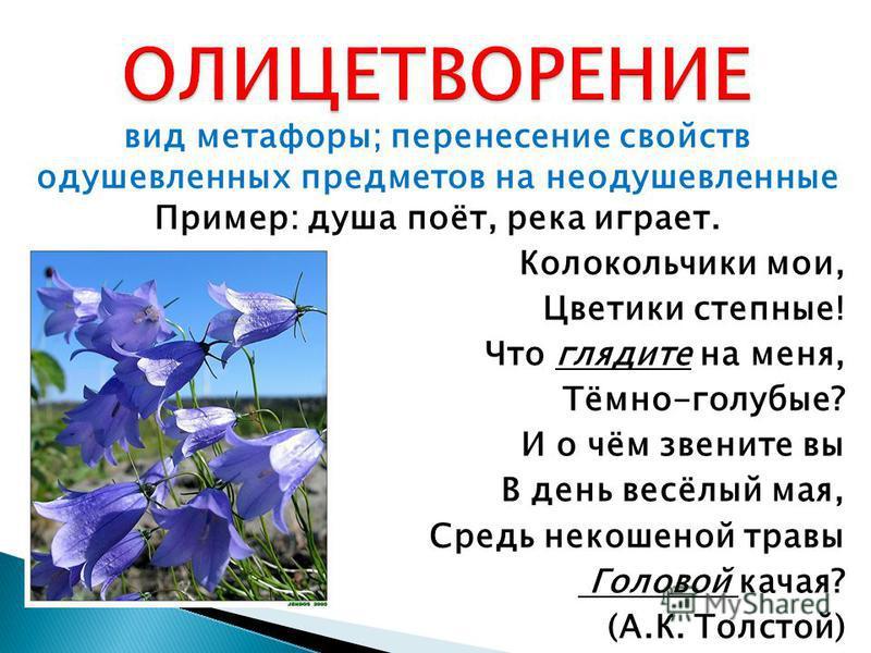 вид метафоры; перенесение свойств одушевленных предметов на неодушевленные Пример: душа поёт, река играет. Колокольчики мои, Цветики степные! Что глядите на меня, Тёмно-голубые? И о чём звените вы В день весёлый мая, Средь некошеной травы Головой кач