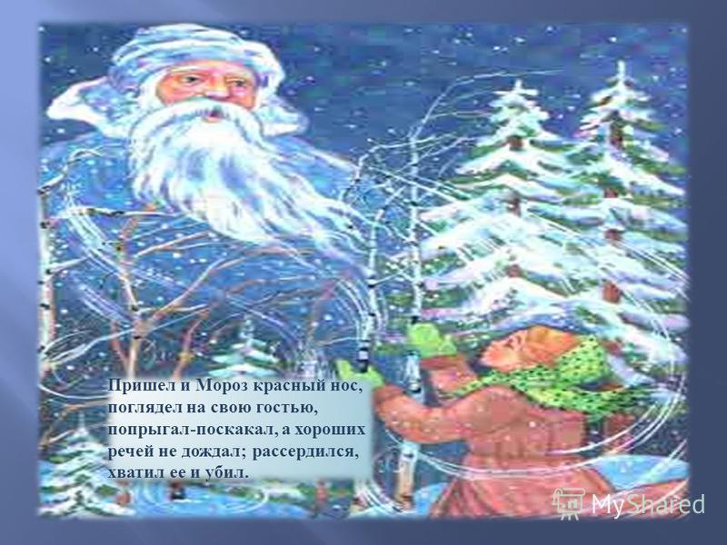 Пришел и Мороз красный нос, поглядел на свою гостью, попрыгал-поскакал, а хороших речей не дождал; рассердился, хватил ее и убил.