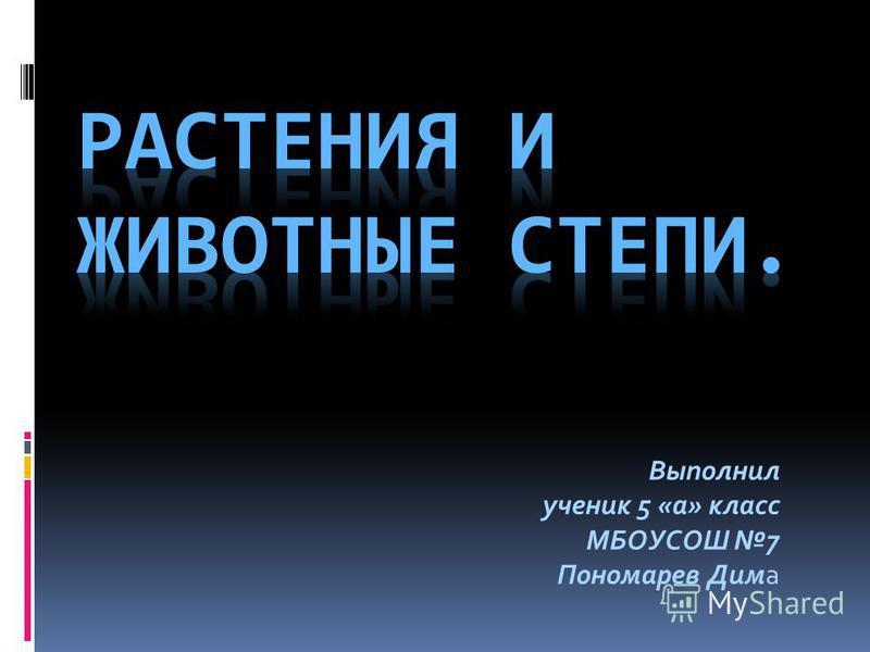 Выполнил ученик 5 «а» класс МБОУСОШ 7 Пономарев Дима