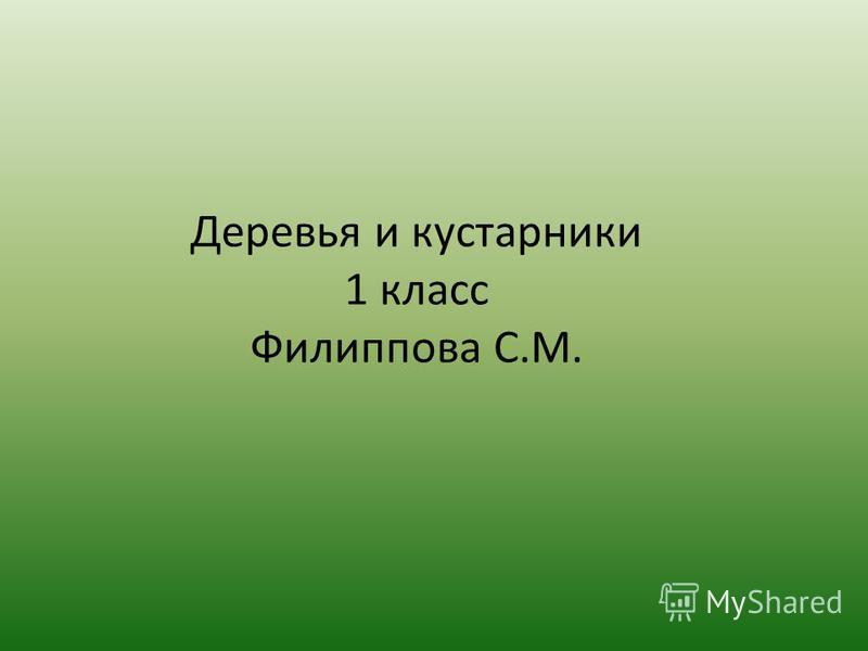 Деревья и кустарники 1 класс Филиппова С.М.