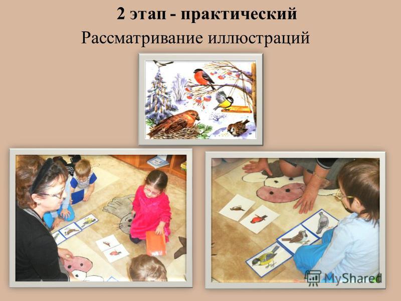 2 этап - практический Рассматривание иллюстраций