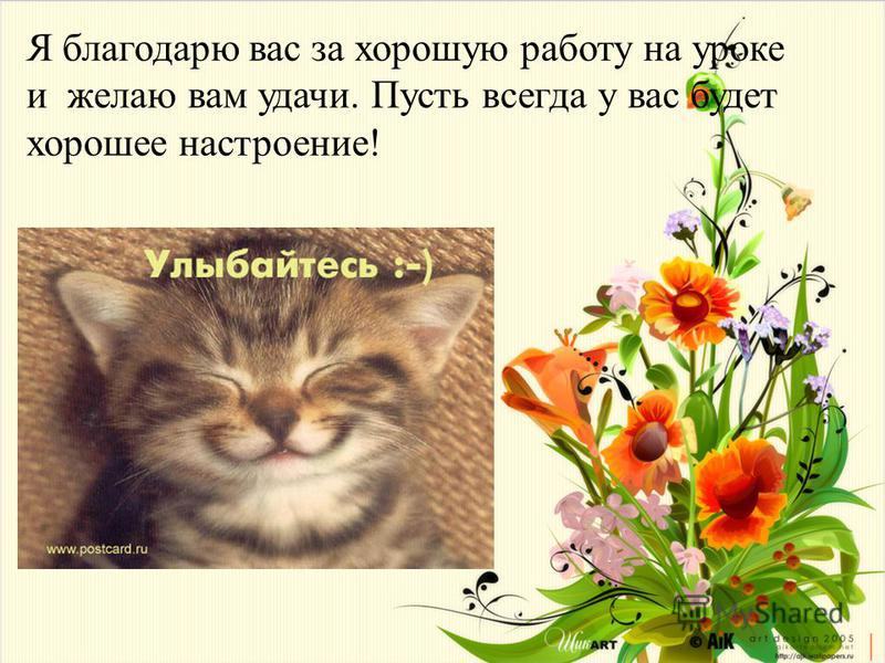 Я благодарю вас за хорошую работу на уроке и желаю вам удачи. Пусть всегда у вас будет хорошее настроение !