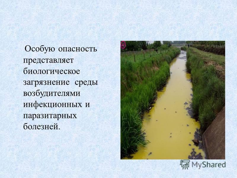 Особую опасность представляет биологическое загрязнение среды возбудителями инфекционных и паразитарных болезней.