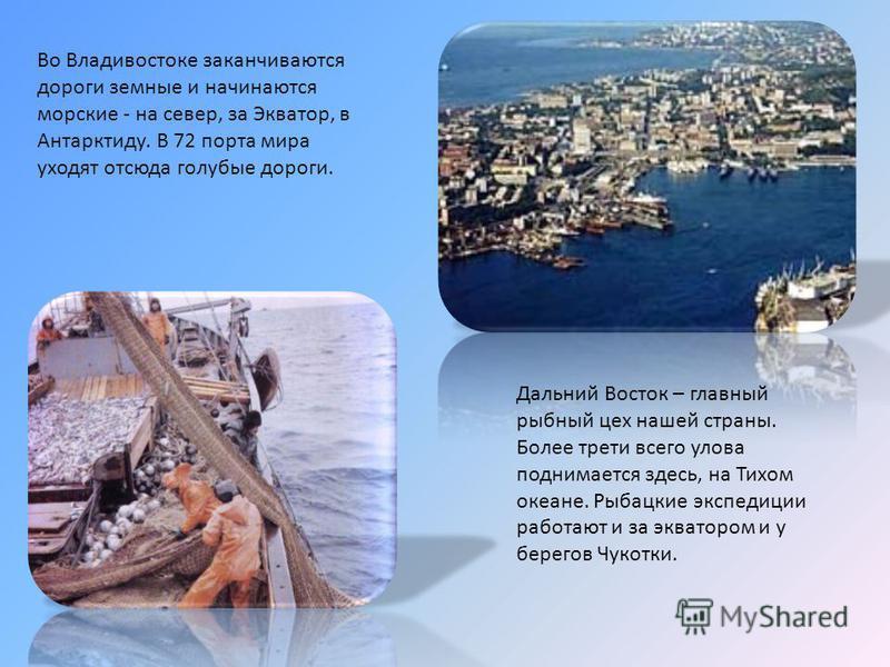 Во Владивостоке заканчиваются дороги земные и начинаются морские - на север, за Экватор, в Антарктиду. В 72 порта мира уходят отсюда голубые дороги. Дальний Восток – главный рыбный цех нашей страны. Более трети всего улова поднимается здесь, на Тихом
