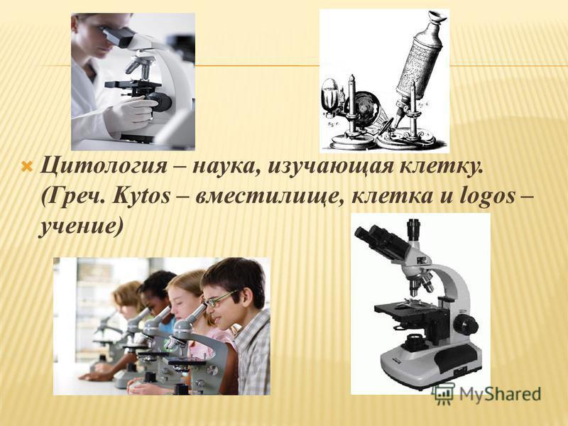 Цитология – наука, изучающая клетку. (Греч. Kytos – вместилище, клетка и logos – учение)