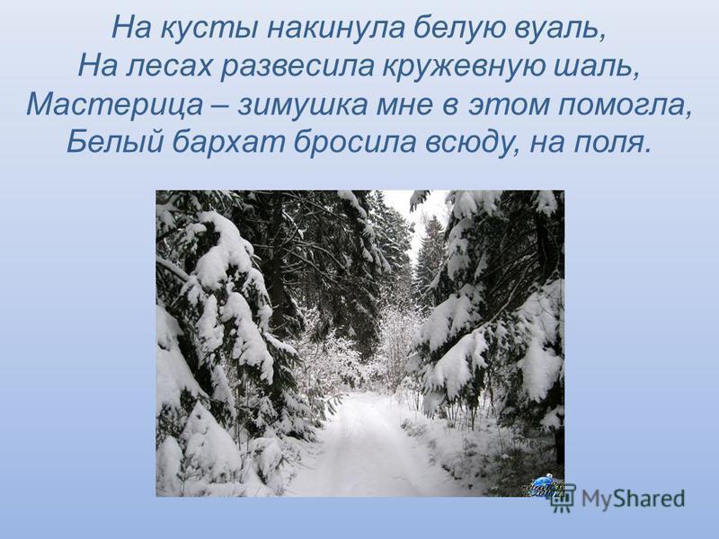 На кусты накинула белую вуаль, На лесах развесила кружевную шаль, Мастерица – зимушка мне в этом помогла, Белый бархат бросила всюду, на поля.