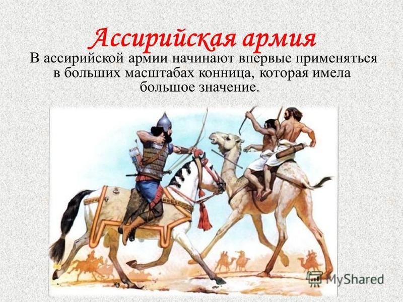 Ассирийская армия В ассирийской армии начинают впервые применяться в больших масштабах конница, которая имела большое значение.