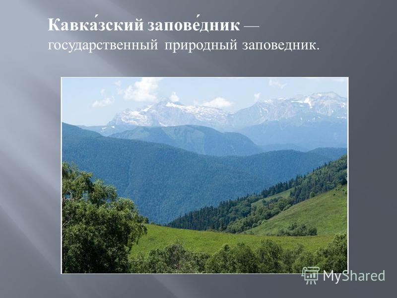 Кавказский заповедник государственный природный заповедник.