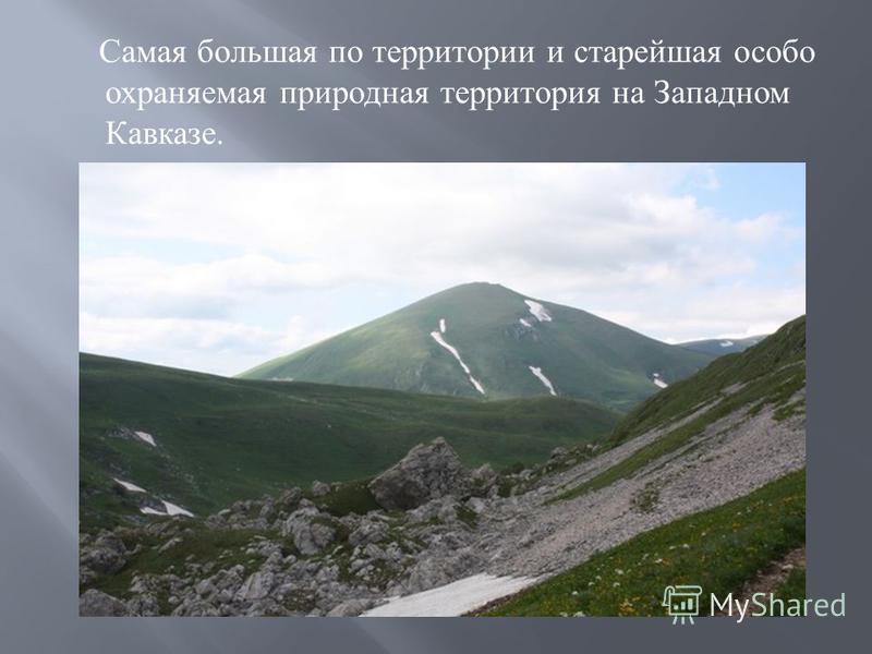 Самая большая по территории и старейшая особо охраняемая природная территория на Западном Кавказе.