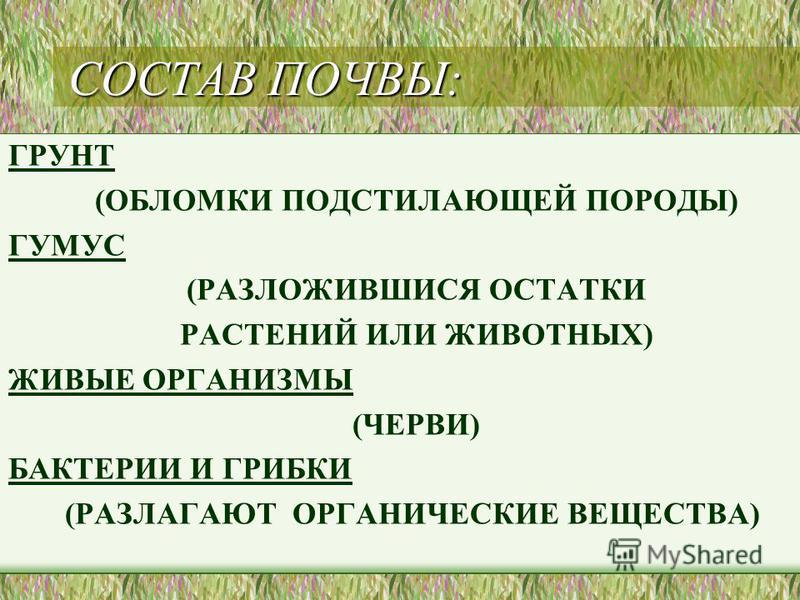 СОСТАВ ПОЧВЫ: ГРУНТ (ОБЛОМКИ ПОДСТИЛАЮЩЕЙ ПОРОДЫ) ГУМУС (РАЗЛОЖИВШИСЯ ОСТАТКИ РАСТЕНИЙ ИЛИ ЖИВОТНЫХ) ЖИВЫЕ ОРГАНИЗМЫ (ЧЕРВИ) БАКТЕРИИ И ГРИБКИ (РАЗЛАГАЮТ ОРГАНИЧЕСКИЕ ВЕЩЕСТВА)