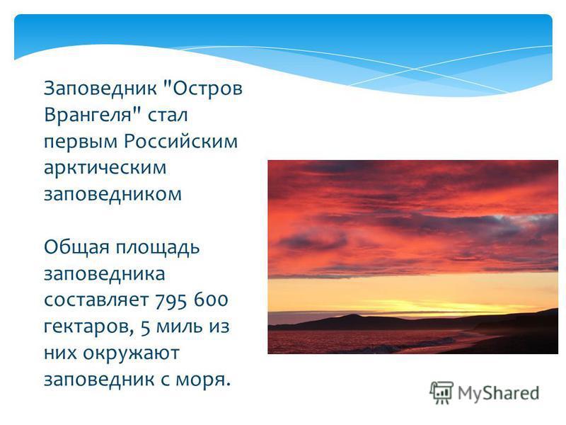 Заповедник Остров Врангеля стал первым Российским арктическим заповедником Общая площадь заповедника составляет 795 600 гектаров, 5 миль из них окружают заповедник с моря.